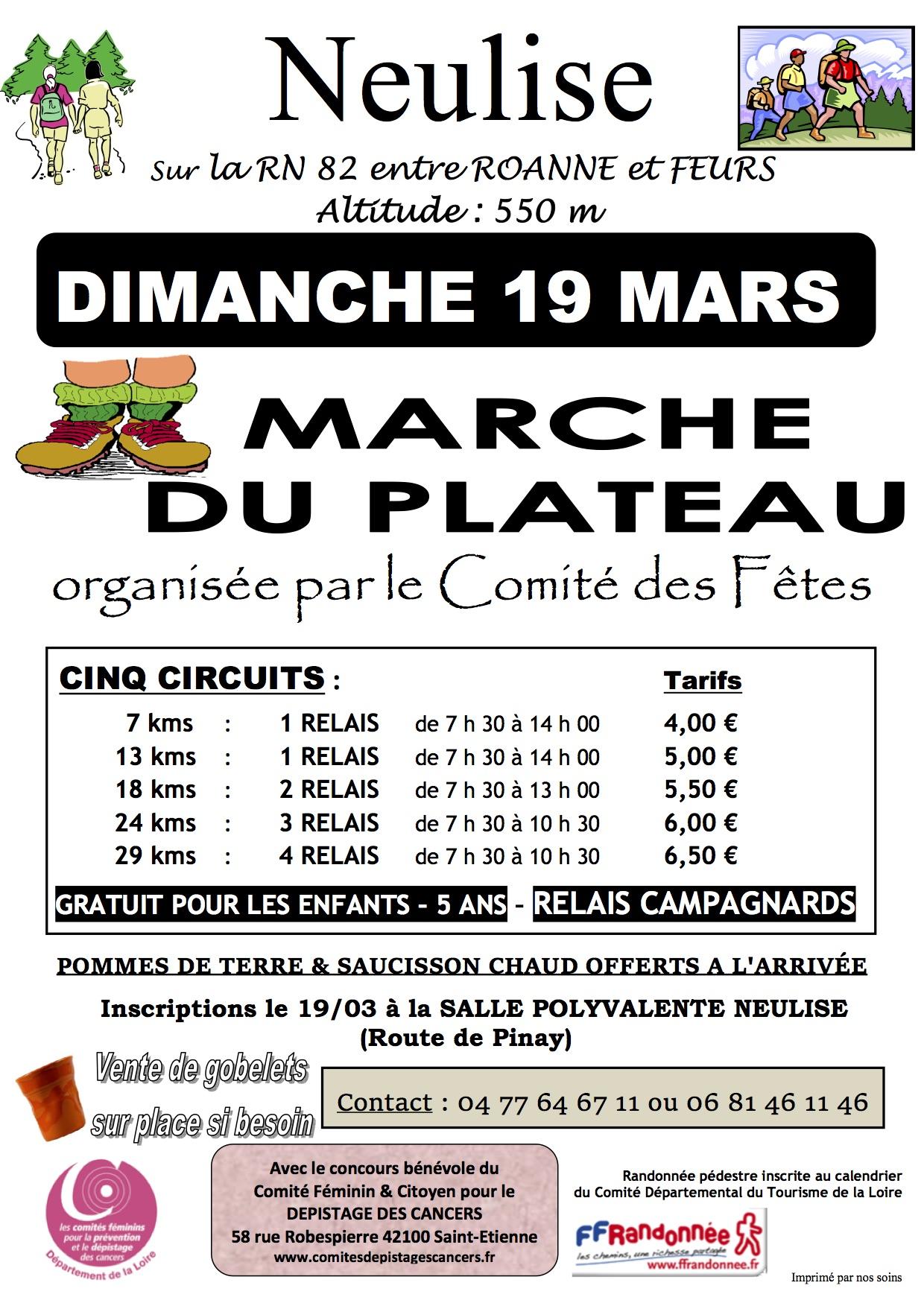 Marche du plateau de Neulise le 19 mars 2017