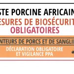 Attention ! Mesures obligatoires pour la peste porcine