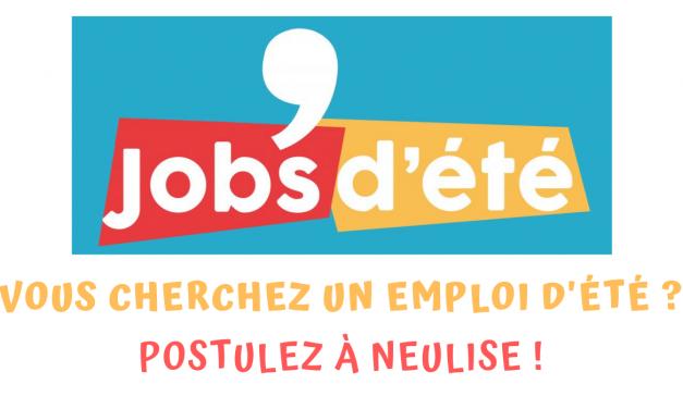 Jobs d'été à Neulise !