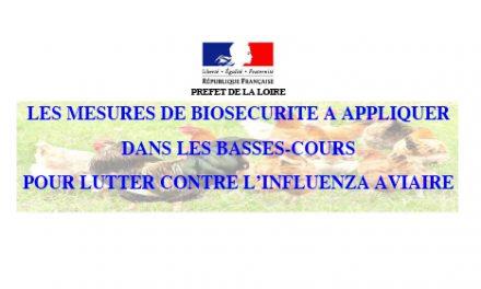 Mesures de biosécurité à appliquer dans les basses-cours