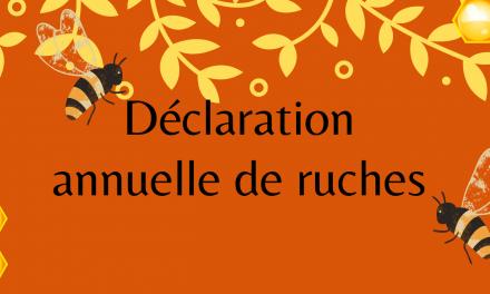 Rappel – Déclaration annuelle de ruches