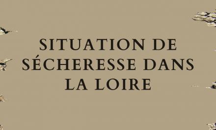 Aggravation de la situation de sécheresse dans la Loire