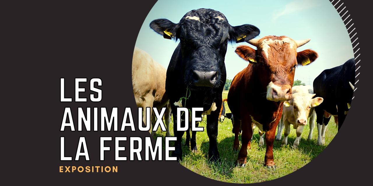 Exposition temporaire : Les animaux de la ferme
